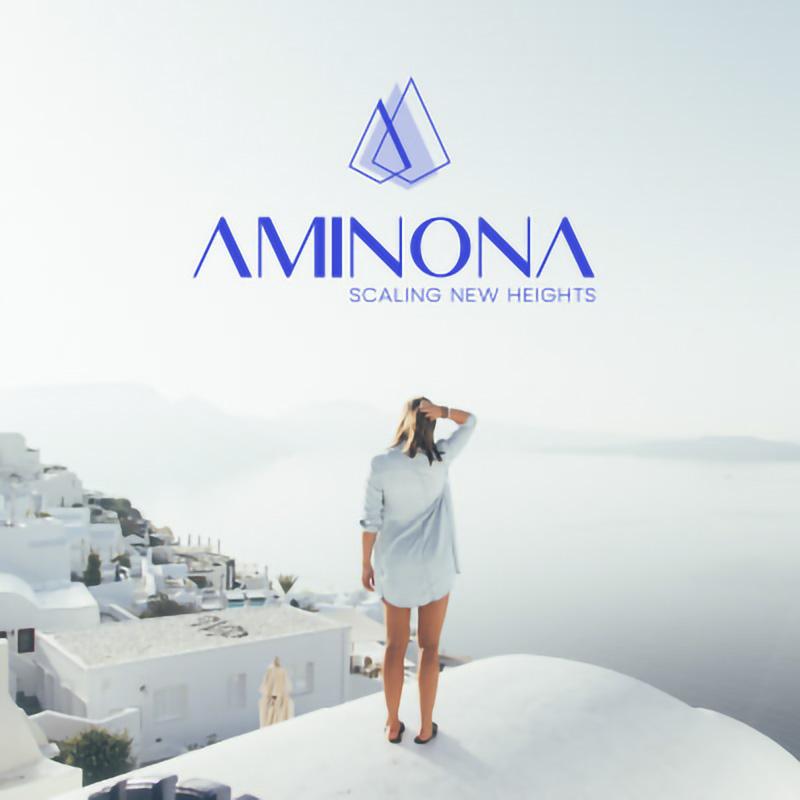 Aminona Consulting, création d'un logo et d'un site internet
